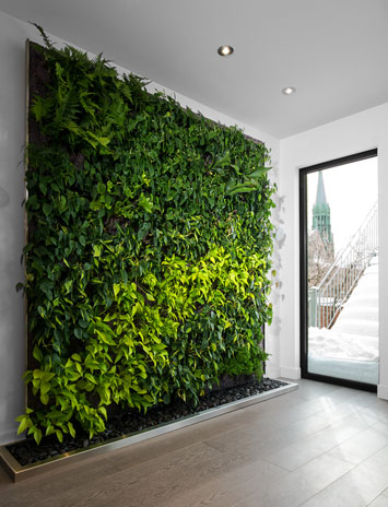 Do living walls clean air green home guide ecohome - Excellent bathroom plants for fresh interior ...