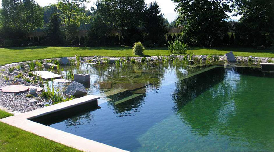 all about natural swimming pools green home guide ecohome. Interior Design Ideas. Home Design Ideas