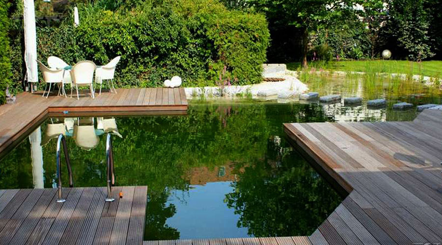 Natural Swimming Pool Design pierce lanucha natural swimming pool traditional pool All About Natural Swimming Pools Green Home Guide Ecohome