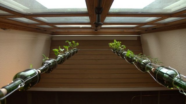 vertical window garden