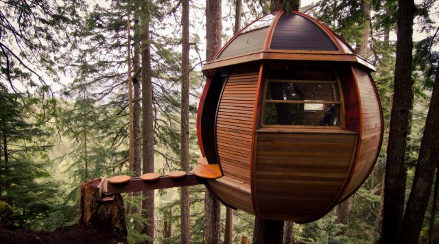 The Hemloft,Joel Allen's secret treehouse