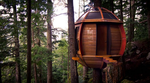 The Hemloft, Joel Allen's secret treehouse