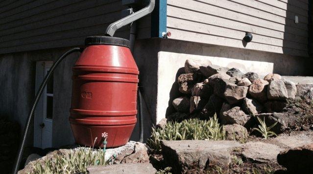 Rain barrels for storm water management and rainwater harvesting