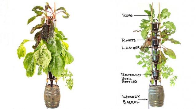 The Elegant Farm hydroponic bottle garden