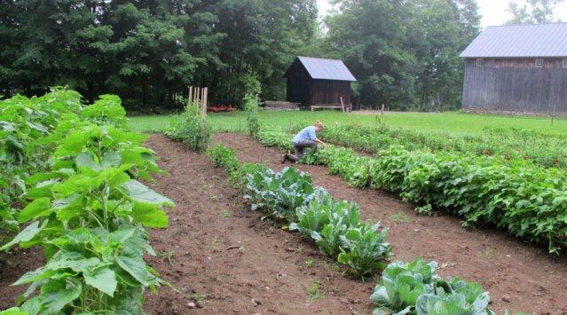 Alex and Jerelyn Wilson's Vermont farm