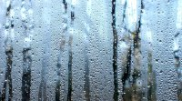 Condensation on windows leads to mold and mildew in homes