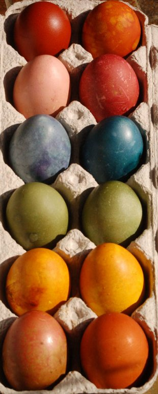 Non-toxic, naturally dyed Easter eggs