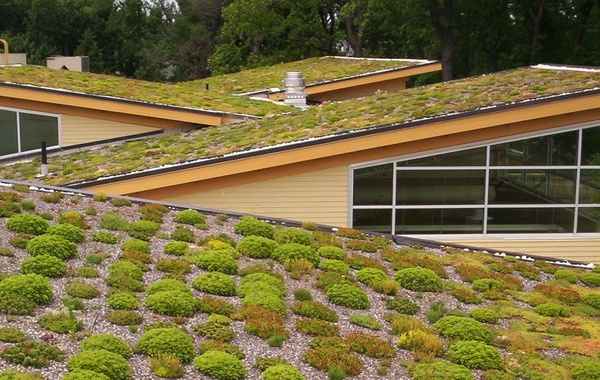 Commercial Living green roof on the Helen Schuler Nature centre