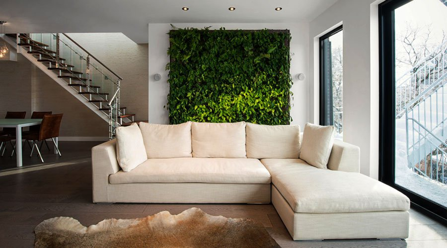 Do Living Walls Clean Air In A Home Ecohome