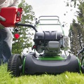 """The perfect lawn"" comes with a very heavy environmental cost!"
