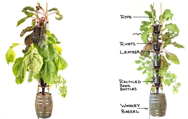 The Elegant Farm hydroponic bottle garden