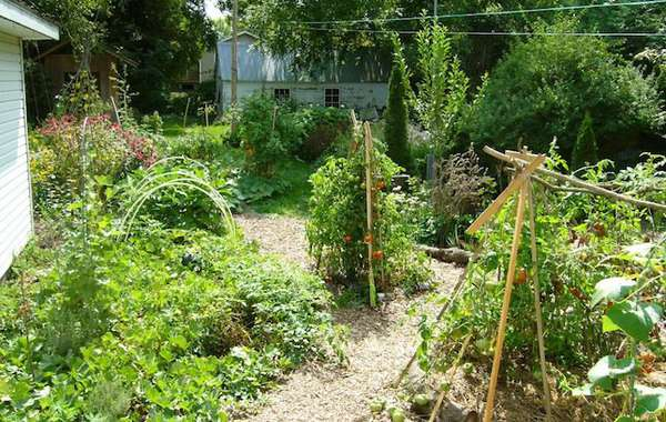 Ecological Design and Gardening: Intro to Permaculture