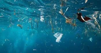 Why Recycling Plastics Needs Legislation to be Effective