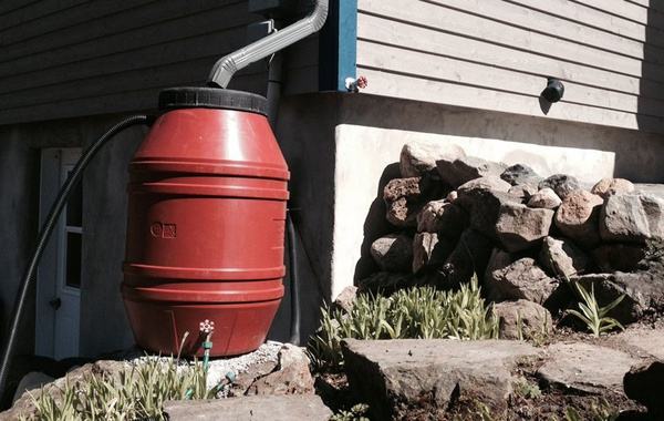 Rain barrels for storm water management and rainwater harvesting
