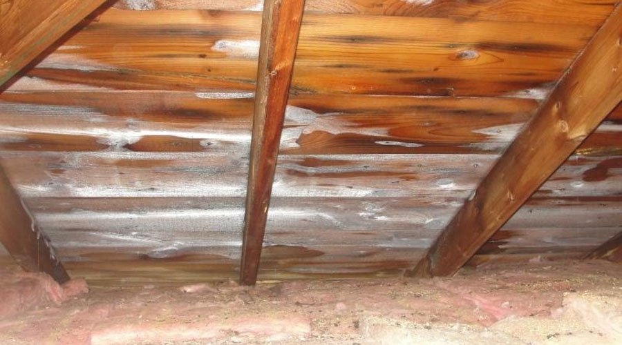Frost In Attics What Causes Attic Ice How To Fix It Ecohome