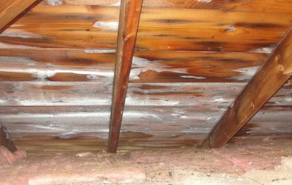 Frost in Attics: What causes Attic Ice? How to Fix it?