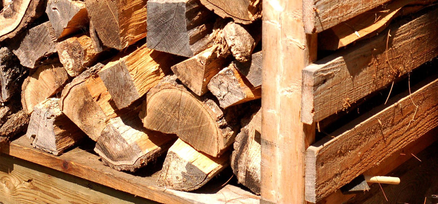Which Wood Is Best For Firewood Tips For Eco Friendly Heat Ecohome