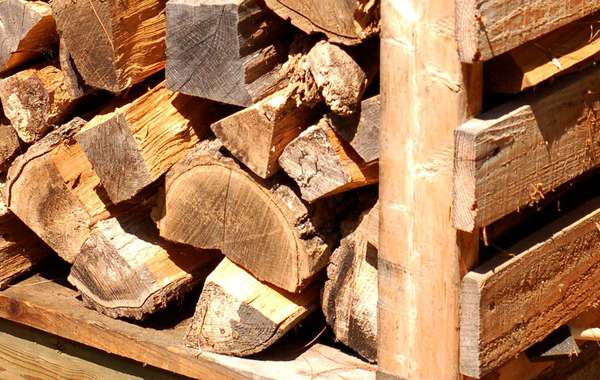 Choosing the right firewood