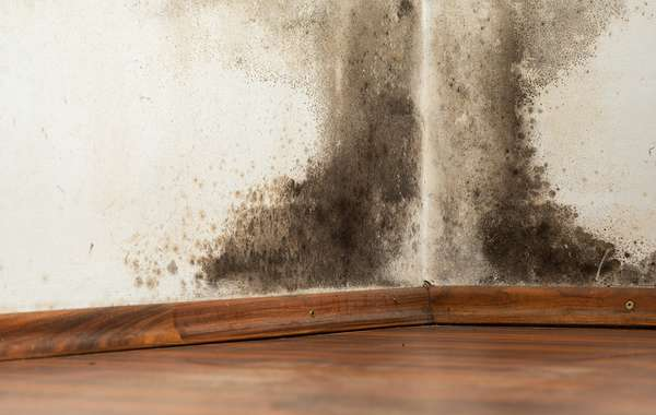 Poly vapour barriers in air conditioned houses can cause mold and rot