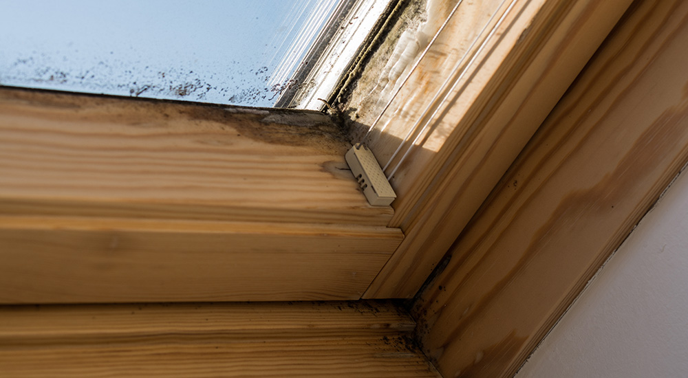 Are Skylights A Bad Idea The Pro S Amp Cons Of Velux S