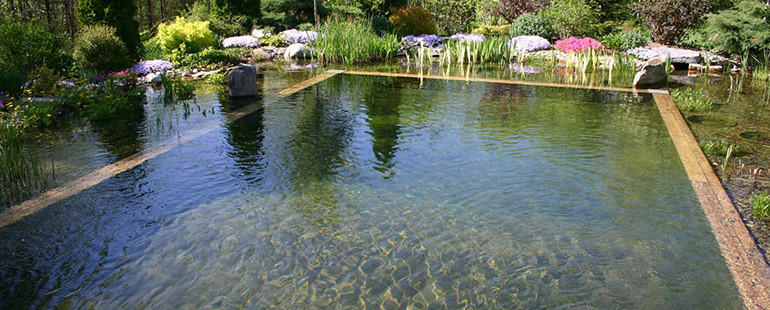 All about Natural Swimming Pools - Ecohome