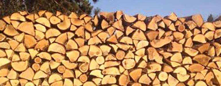 White Ash firewood is an excellent high heat wood choice